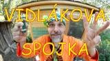 Vidlák a čepice zmijovka zelená se žábou - video Vidlákova-spojka