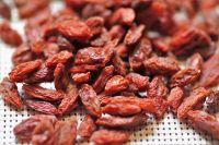 Kustovnice čínská GOJI - sušený plod, 100g
