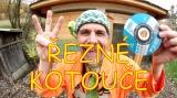 Čepice zmijovka zelená se žábou - video Vidlák řezné kotouče