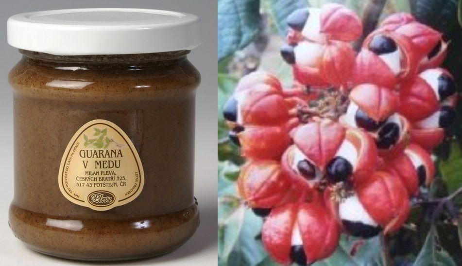 Guarana v medu