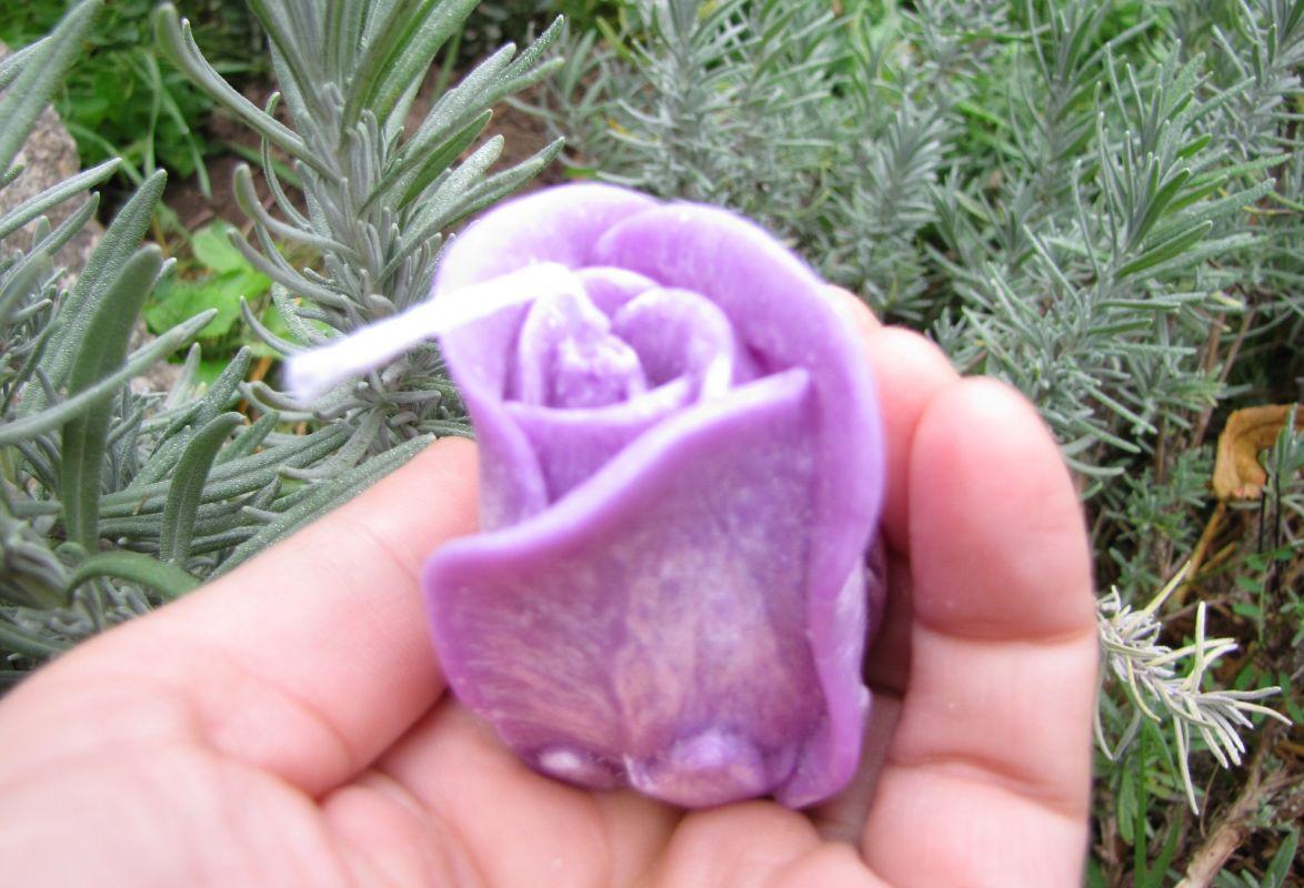 Svíčka růže fialová levandule