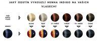 Přírodní barva na vlasy henna vzorník