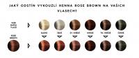 Přírodní barva na vlasy vzorník