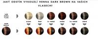 Barva na vlasy přírodní vzorník