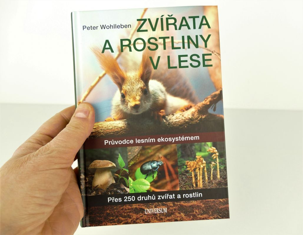 Zvířata a rostliny v lese Peter Wohlleben