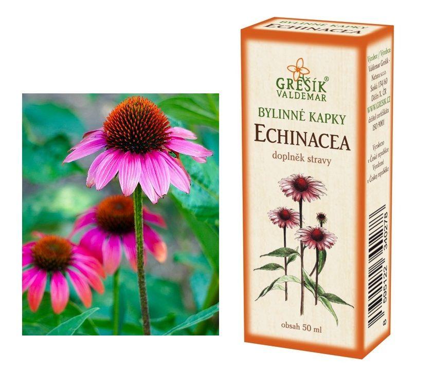 Bylinné kapky kořen echinacea