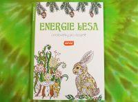 Antistresové OMALOVÁNKY pro dospělé ENERGIE LESA