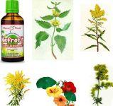 Směs léčivých bylin NEFROFIT tinktura, 50ml