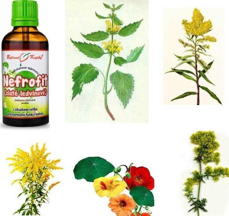 Nefrofit bylinky na ledviny