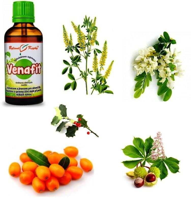 Venafit bylinky pro zdravé žíly