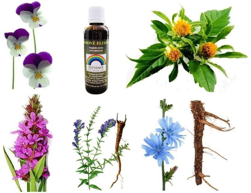 Duhový elixír Botanix bylinná tinktura