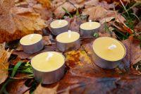 Čajové svíčky z včelího vosku