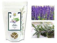 Šalvěj lékařská bylinka na čaj