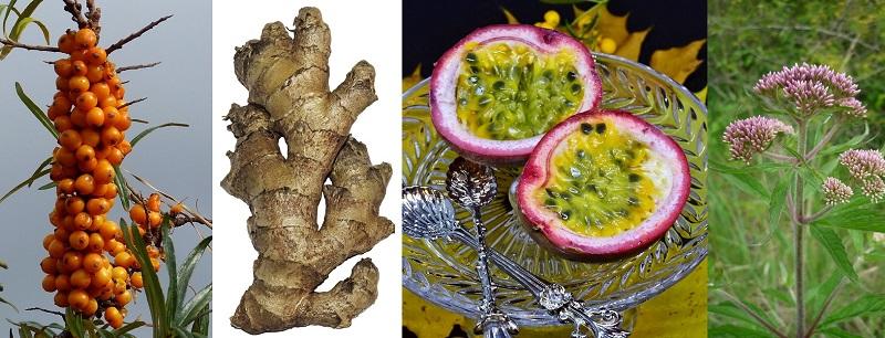 Superpotraviny-vitamíny-minerální látky